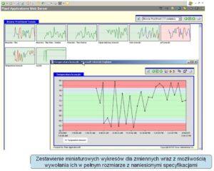 Monit_efektyw_vix.com_.pl_pkt13